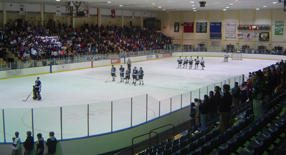 Mennen Arena, not yet full
